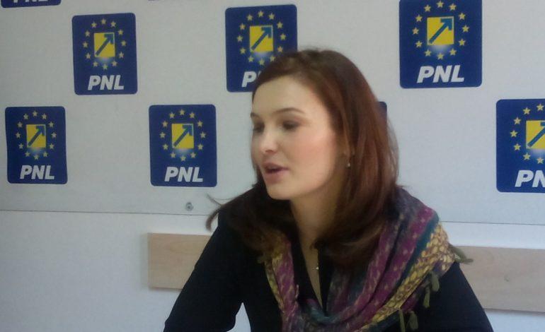 """""""PSD dă a doua lovitură de stat!"""""""