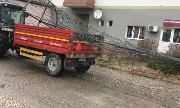 Bradul de Craciun a ajuns in centrul orasului Moldova Noua!