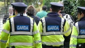 Acțiunea de amploare al IGPR și Gărzii Forestiere s-a încheiat cu rezultate alarmante: nu se respectă legea!
