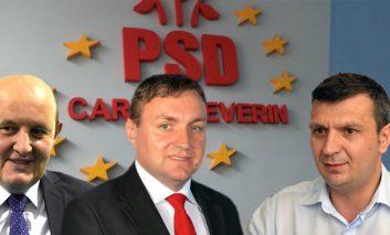 PSD Caraș-Severin,cauta sef de partid sedinta maraton
