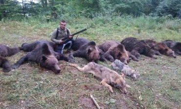 Ministerul Mediului vrea să dea liber la vânat de lupi și urși!