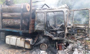 """""""Blestemele"""" ecologiștilor îi ajung din urmă pe transportatori de lemne."""