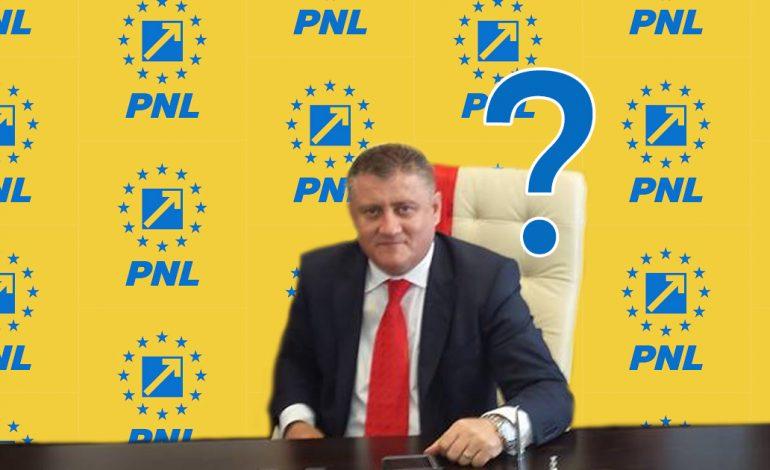 Iliuţă Boboescu, primarul PSD al comunei Coronini dorit de liberali?!