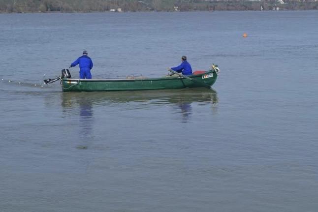 Pescuitul industrial sistatîn Clisura Dunării!