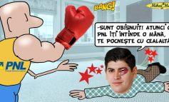 """Andrei Plujar: """"Atunci când PNL îți întinde o mână, te pocnește cu cealaltă!"""""""