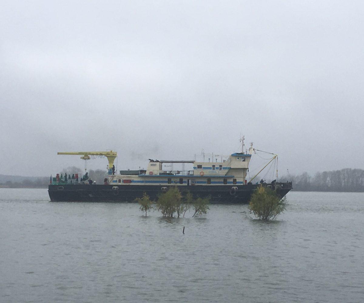 Apariție surprinzătoare pe Dunăre-nava de semnalizare Semnal 1!