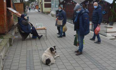 """Adrian Torma: """"Ai sa ajungi  primar, Eugen Băleanu, patru ani m-ai tocat cu câinii vagabonzi, să te văd ce vei face tu!"""""""
